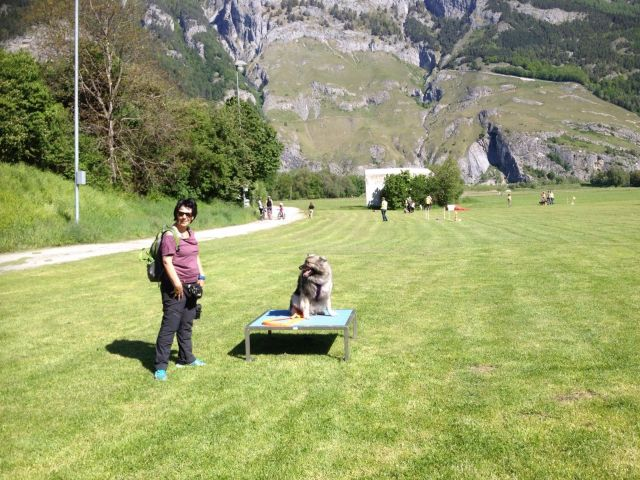 Mobility in Chur
